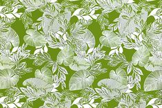polyester and cotton fabric. Colors and shapes of this picture may vary from the original fabric. Hawaiian Print, Playsuit, Plant Leaves, Yard, Shapes, Fabric, Green, Plants, Pictures