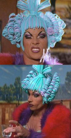 carnaval Recipes food and wine address change Drag Queens, Priscilla Queen, Foam Wigs, Guy Pearce, Queen Makeup, Queen Costume, Hooray For Hollywood, Club Kids, Film Serie