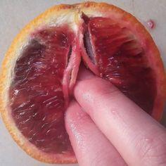 Blood Orange series by stephanie_sarley