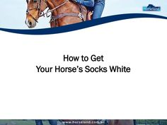 You can make your horse's socks white with the use of quality grooming kits. Learn how to do this on your own by reading this presentation from Horseland.com.au.