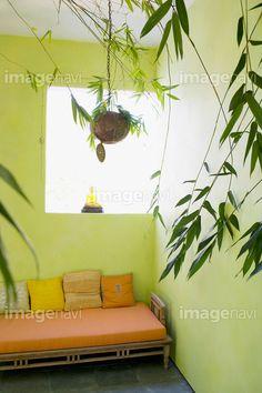 「Daybed in green room with plants」(17905429)の写真素材をダウンロードで買えるストックフォトサイト「imagenavi」(イメージナビ)。Web素材からポスター印刷素材まで幅広いサイズをご用意。