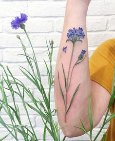 cornflower tattoo, make with real plant #liveleaftattoo #tattrx #cornflower…