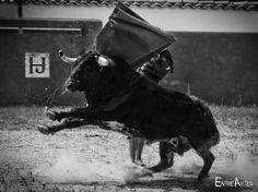 Dos toros a puerta cerrada en casa de Los Bayones sumaron a la intensa preparación que Jesús Duque está realizando
