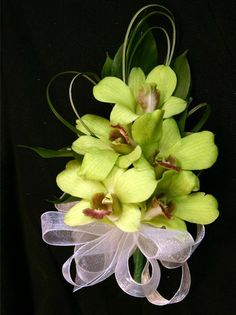 pew end orchid