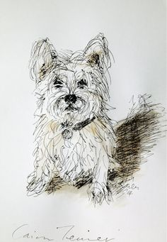 Cairn Terrier dog original ink sketch on paper by tintabernacle