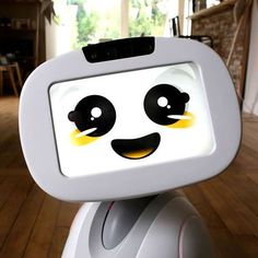 De Buddy robot helpt bij de communicatie, de veiligheid, de educatie en activering en kan helpen bij ouderenzorg.