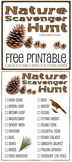 Free Printable for Kids by - , Nature Scavenger Hunt; Free Printable for Kids by - Nature Scavenger Hunt; Free Printable for Kids by - Camping Scavenger Hunts, Outdoor Scavenger Hunts, Nature Scavenger Hunts, Scavenger Hunt For Kids, Camping Hacks With Kids, Camping Activities For Kids, Free Games For Kids, Group Camping, Family Camping