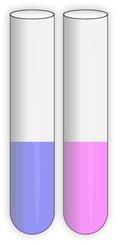 test-tubes-open-clipart-vector-free.png (432×900)