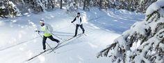 Bežecké lyžovanie| Liptovský Mikuláš Winter Holidays, Mount Everest, Sporty, Mountains, Nature, Travel, Outdoor, Winter Vacations, Voyage