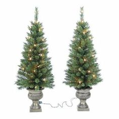 St. Nicholas Square 2-pc. 3 1/2-ft. Potted Pre-Lit Christmas Tree Set - Indoor and Outdoor