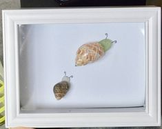 Snail Sea Glass Art // Shells // Seashells // White 5 x 7 Shadowbox Frame // Bugs // Cute // Snails // Gifts // Brown // Green // Tan