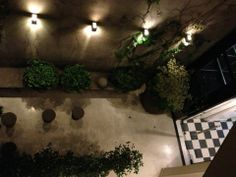 """See 30 photos and 25 tips from 251 visitors to Vain Boutique Hotel Buenos Aires. """"Hotel is very charmy, well located, close to the subway and nice. Soho, Hotel Palermo, Boutique Hotel Room, Plants, Decks, Boutique Hotel Bedroom, Small Home Offices, Plant, Planets"""