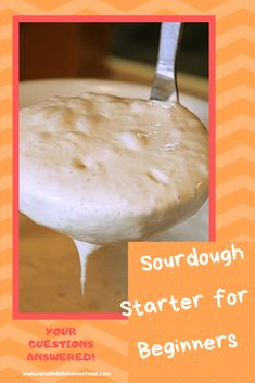 There is no reason to be intimidated by sourdough starter. This beginners guide will get you going and answer the most common sourdough questions. Best Sourdough Starter Recipe, Sourdough Recipes, Bread Recipes, Starter Recipes, Muffin Recipes, Recipes With Yeast, Cooking Recipes, No Carb Bread, Baking Supplies
