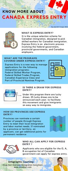 Are you planning to immigrate to Canada? Know about the express entry first. Immigration Au Canada, Overseas Education, Infographics, How To Apply, Study, How To Plan, Studio, Infographic, Investigations