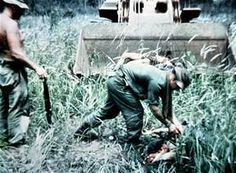 Vietnam War Combat - Bing images