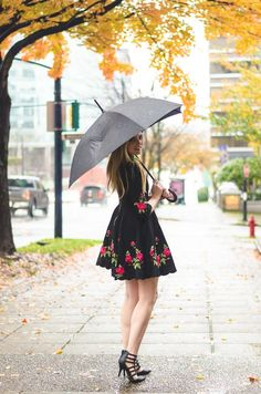 Rosy Fit and Flare Dress