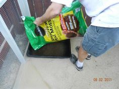 Peet moss for chicken dust baths. I will have to do this in our sand run.