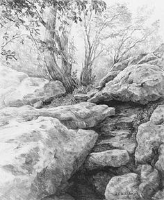 'Tehachapi Mountain Park' graphite pencil drawing by Diane Wright at Starving Artists Pencil Drawings Of Nature, Drawing Rocks, 3d Drawings, Pencil Art, Drawing Sketches, Painting & Drawing, Drawing Trees, Bush Drawing, Pencil Sketching
