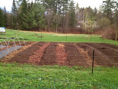 raised beds without the sides