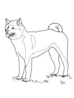 seeing eye dog coloring pages - photo#42