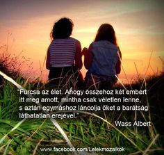 About Me Blog, Bff Quotes, Einstein, Quotations, Best Friends, Friendship, Love You, Wisdom, In This Moment
