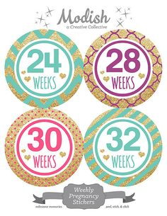 Month by month baby onesie stickers. This set includes 12 monthly baby stickers designed for a baby girl, and arrives packaged for gift giving. Capture your baby's monthly milestones. Baby Announcement Photos, New Baby Announcements, Baby Month Stickers, Baby Milestones, Free Baby Stuff, Baby Month By Month, Sticker Design, Pink And Gold, Purple Teal