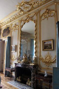 Versailles. Wall paneling.