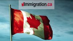 Current Canadian immigration policy offers temporary and permanent residence under more than 65 programs divided between the Federal and Provincial governmen. Working Holiday Visa, Working Holidays, Visa Information, Immigration Canada, Happy Canada Day, Canada Eh, Digital News, Irish Men, Quebec