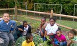 Harrisburg YWCA Garden Wins Award