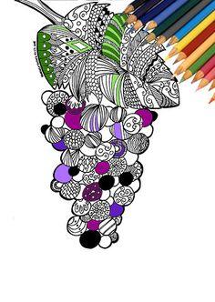 Disegno grappolo d'uva da colorare stampare di FarfallaDorata