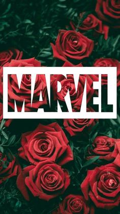 Marvel Wallpaper for iPhone from imodopay.site Marvel Wallpaper for iPhone from imodopay.site # The post Marvel Wallpaper for iPhone from imodopay.site appeared first on Marvel Universe. Logo Marvel, Marvel Avengers, Marvel Funny, Marvel Art, Marvel Memes, Captain Marvel, Marvel Comics, Avengers Cast, Avengers Games