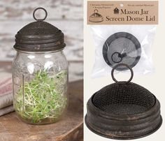 "3""dia. x 1½""T. Fits any standard Mason jar. Use your Mason jar as a creative terrarium. Sprout beans, seeds, and more in any Mason Jar. Add potpourri, oils, cinnamon sticks, and other scents. Convenie"