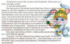 Doamna Fagilor: Puterea unei ÎMBRĂȚIȘĂRI. Word Search, Diagram, Words, Horse