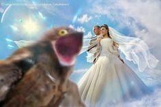 Najgorsze sesje ślubne: Szalejący photoshop i kiczowate scenerie. Te zdjęcia powalają fantazją!