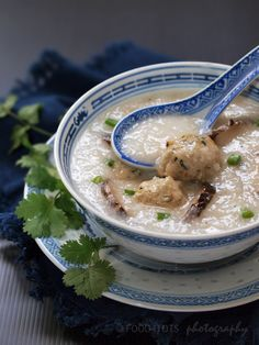 recipe for toddlers, food for toddlers, food for tots, picky eaters, children, baby food,congee, porridge, rice porridge, juk, zhou, jook, rice,