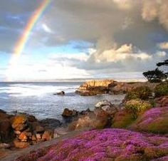 rainbow and Monterey Coast with pink ice plants, image. Article about where to go in Pacific Grove for bike rentals, ice cream, etc.