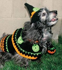 Crochet Witch Pet Costume a free crochet pattern Monster Costumes, Diy Dog Costumes, Halloween Crochet, Halloween Crafts, Costume Halloween, Kid Crafts, Funny Animals, Funny Pets, Pet Clothes