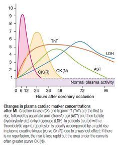 Cardiac Markers -  Serum Cardiac Markers Are Used To Confirm Or Exclude Myocardial Cell Death ◬