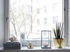 #lagerma: Ikkunalaudalla / On the windowsill