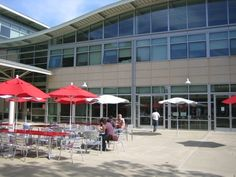YouTube キャンパス「evolution」 « シリコンバレーの社員食堂