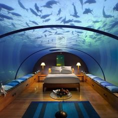 im pretty sure i would never leave my bedroom ...AMAZING !