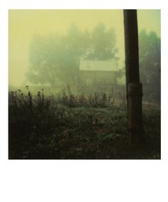 Andrei Tarkovsky's series of Polaroids taken by the director in Russia and Italy between 1979 and 1984.