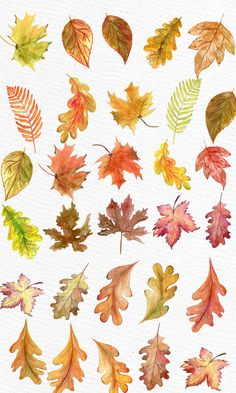Fall into this soothing soundtrack of Autumn leaves hurling through the late night. We invite you to mellow down to the sounds of crunching leaves, howling winds and chirping birds. Watercolor Leaves, Watercolor Landscape, Abstract Watercolor, Watercolor Illustration, Watercolor Paintings, Tattoo Watercolor, Simple Watercolor, Watercolor Animals, Watercolor Background
