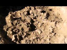 Time Team Special 41 (2009) - The Secrets of Stonehenge (Salisbury Plain...