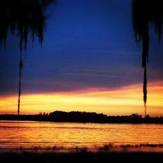 Orlando, Florida - January 2015 #conference