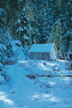 Peaceful in the central Cascades of Washington • photo: Patrick McManus on Flickr