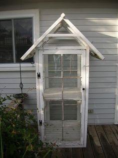 perfect mini green house!
