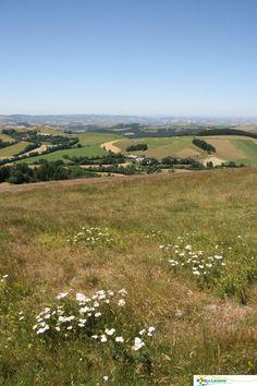 #Murat sur Vèbre, petit village des #Monts de Lacaune, #Tarn. Calme, bonne #gastronomie, #randonnées et plus si affinités... http://www.tourisme-montsdelacaune.com