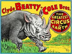 Clyde Beatty-Cole Bros - The Greatest Circus On Earth - - Circu – Poster-Rama
