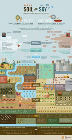 An Agroecological Graphic Break: Presenting a stark contrast between industrial agriculture and agroecological methods, this infographic developed by the Christensen Fund actually depicts the complexity of agricultural landscapes, as well as the interactions and interdependencies of different land use types.